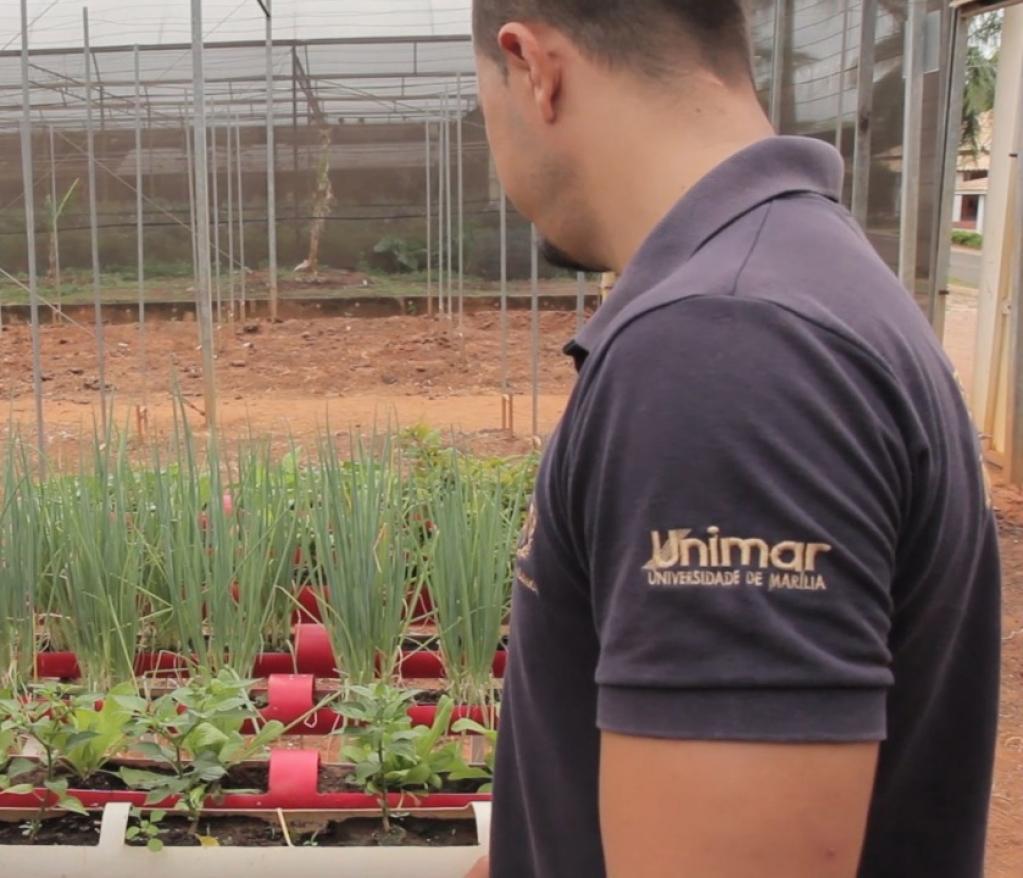 Giro Marília -Agronomia da Unimar desenvolve projetos sustentáveis e soluções ambientais