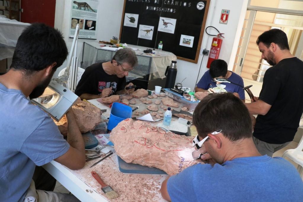 Giro Marília -Cientistas dos EUA e Argentina pesquisam fósseis em museu de Marília