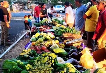 Giro Marília -Luta contra agrotóxicos terá encontro e produtos ecológicos em Marília