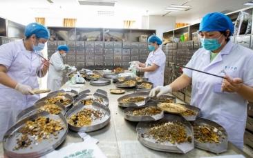 Giro Marília -Como a China está impulsionando sua questionada medicina tradicional na pandemia